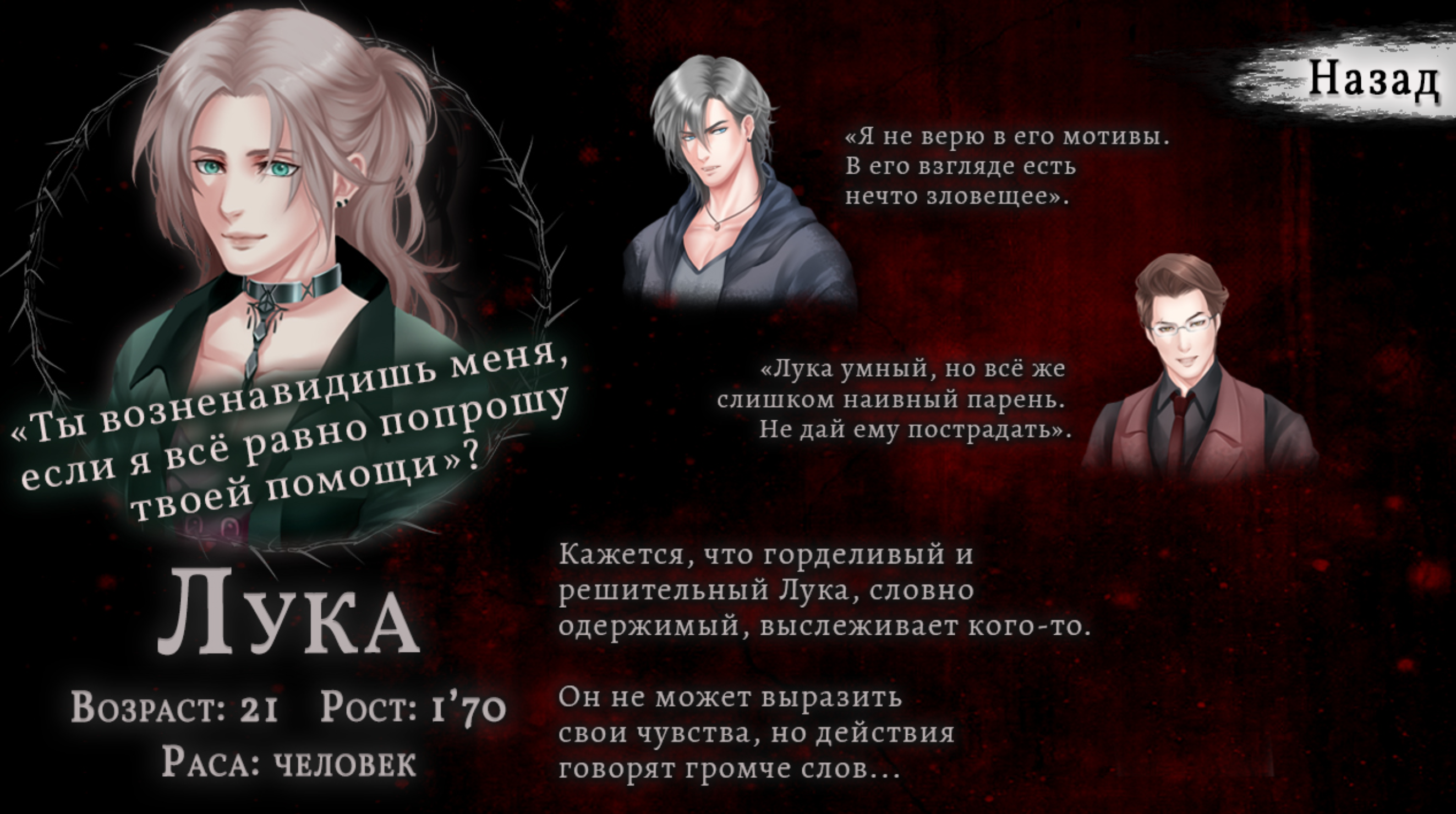 Luka's in-game character profile