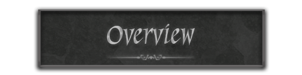banner titled overview